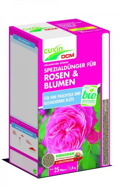 Rosen und Blumen