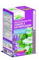 Clematis und Kletterpflanzen