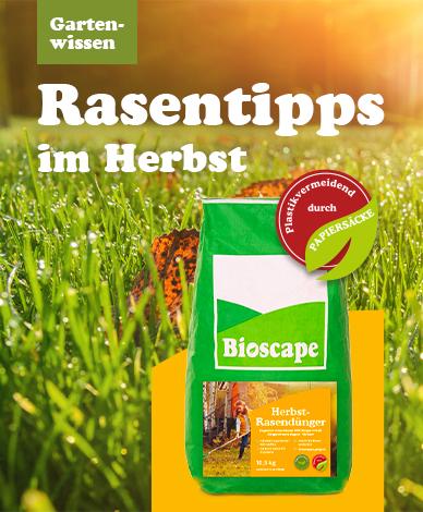 media/image/2-mobile-banner-herbstrasenduenger.png