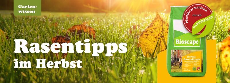 Die richtige Rasenpflege im Herbst!